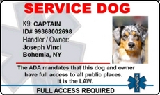 Service dog identification badges for Service dog id template